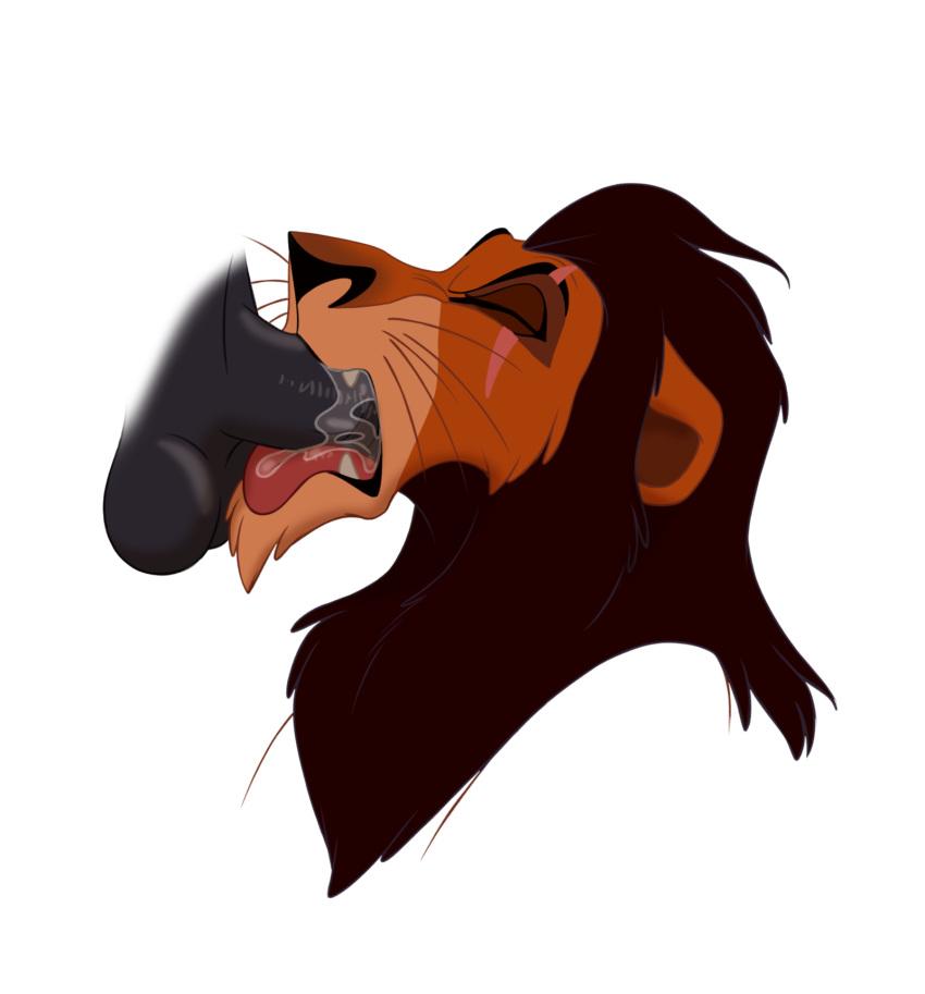 in kiara lion the guard Who the fuck is beanie eyelash